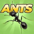 口袋蚂蚁模拟器汉化版